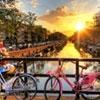 Amsterdam Explorer Summer 2019 On Cheap Rates